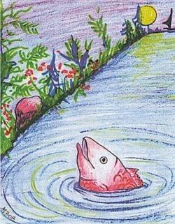 peixe-vermelho