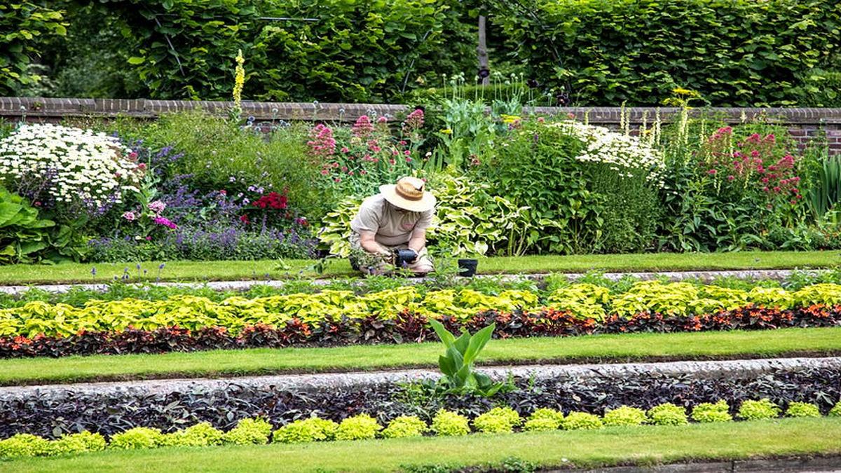 Jardineiro Cuidadoso