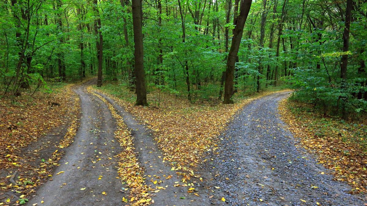 Caminhos diferentes